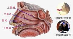 成都哪个医院耳鼻喉科看鼻甲肥大比较好